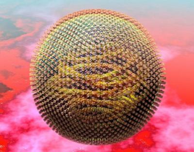 вирус кори